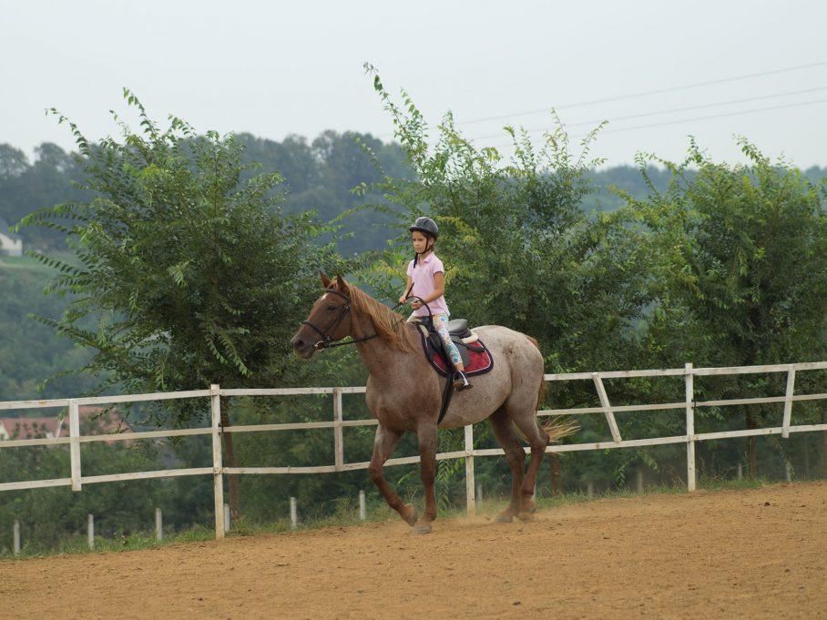Lovaglás, lovas oktatás gyerekeknek is